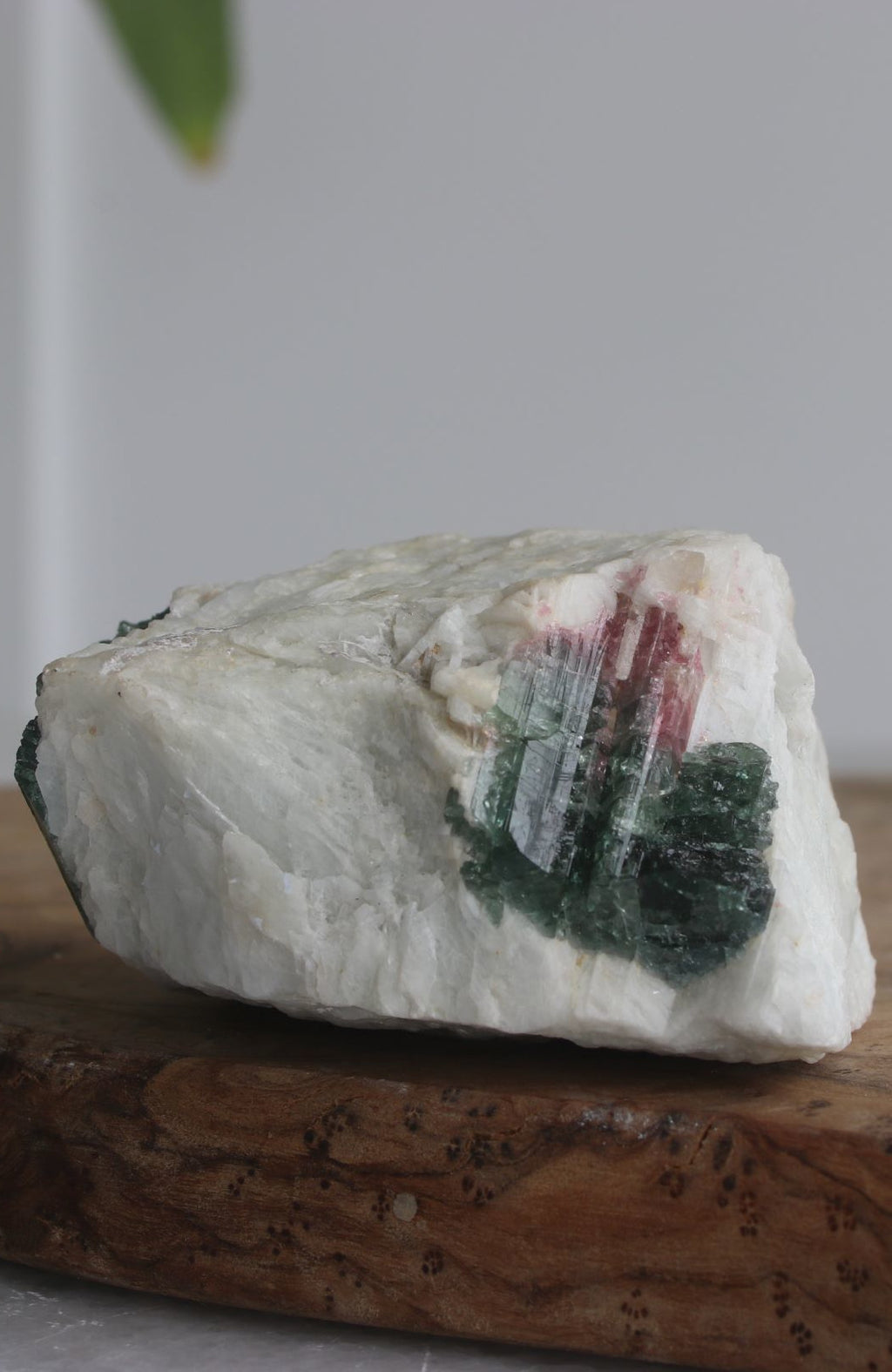 Watermelon Tourmaline Specimen