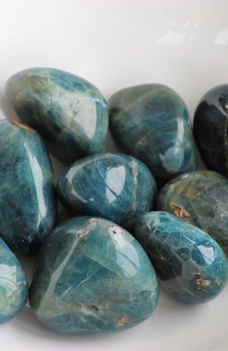 Blue Apatite  A Tumbled Stone (Pack of 6)
