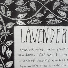 Load image into Gallery viewer, Detail of the profile on lavender from A Handy Guide to Home Protection Featuring Select Plants and Minerals by Moe Bowstern of Blackbird Ritual Services.  Page is black and white with handwritten text and a floral border.