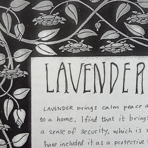 Detail of the profile on lavender from A Handy Guide to Home Protection Featuring Select Plants and Minerals by Moe Bowstern of Blackbird Ritual Services.  Page is black and white with handwritten text and a floral border.