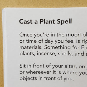 Black text on white page titled: Cast a Plant Spell.