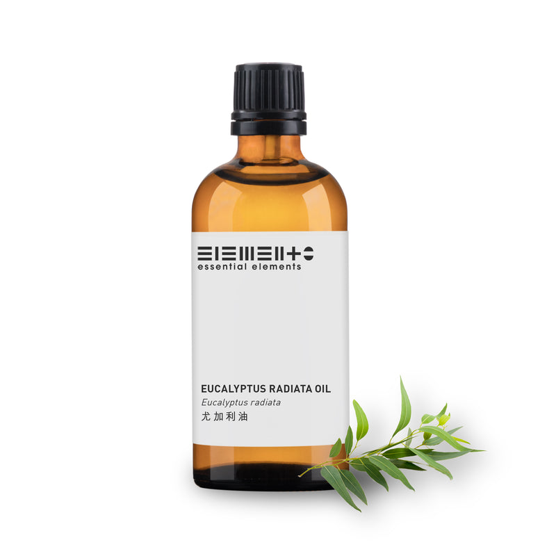 Eucalyptus Oil (Radiata)