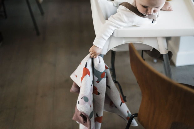 FABLIEK ORGANIC COTTON BLANKET - DASHSHUNDS