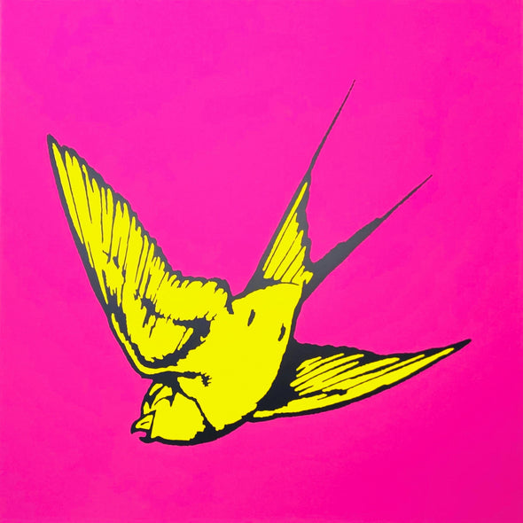 Dan Baldwin - 'Love and Light - Pink and Yellow'