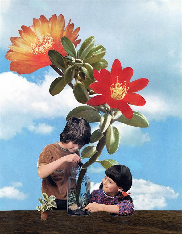 Joe Webb - 'Growing Things'