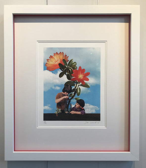 Joe Webb - 'Growing Things' (Framed)