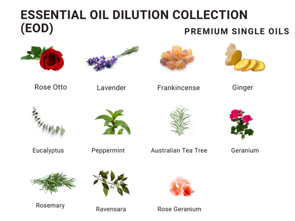 Essential Oil Dilution 30ml (11 blends available)