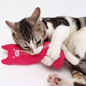 Interactive Catnip Toy