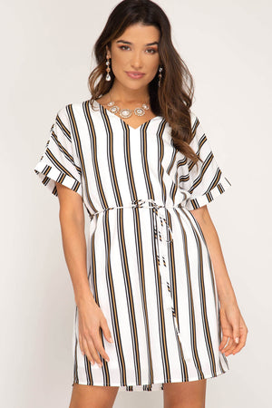 Stripe to See You Woven Dress
