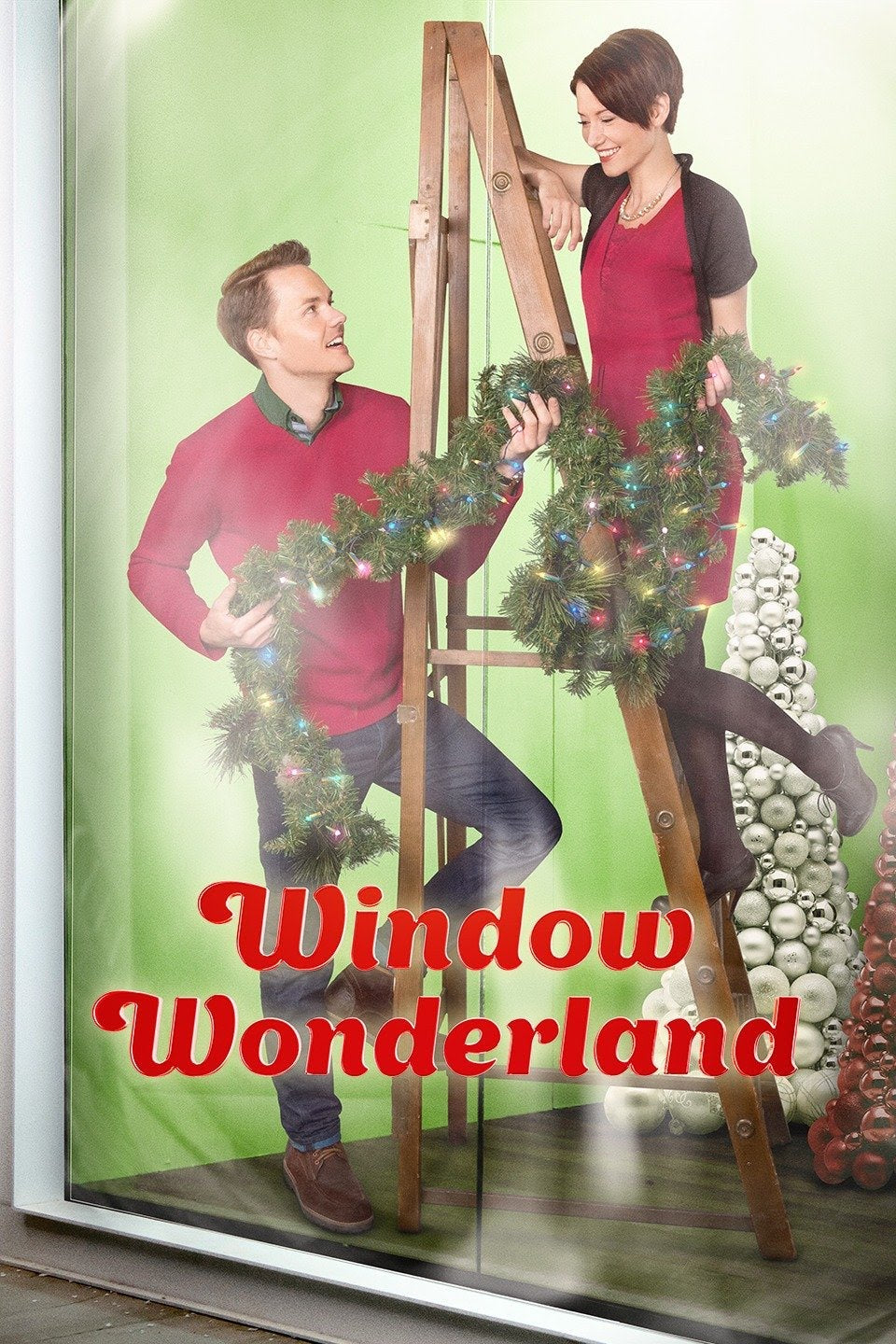 Window Wonderland Dvd (2013)