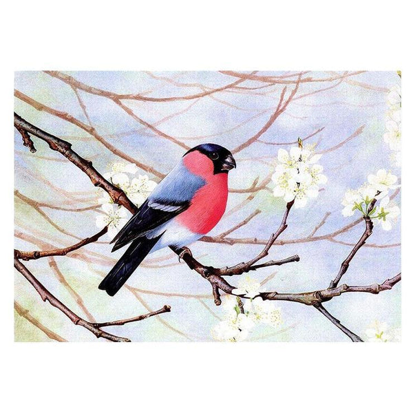 For Beginners Winter Bird 5d Diy Cross Stitch Diamond Painting Kits QB6455