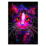 5d Diy Diamond Painting Kits Special Cat QB7014