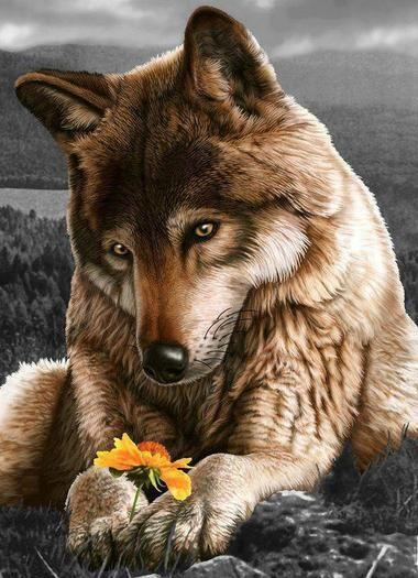 2019 5D Diy Diamond Painting Kits Cross Stitch Wolf VM90358