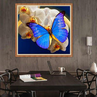 5d Embroidery For Beginners Butterfly Diy Diamond Painting Kits VM9024