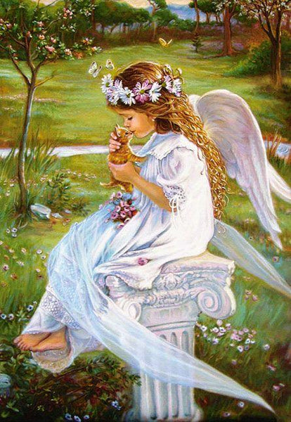 5D Diy Diamond Painting Kits Cross Stitch Mosaic Angel Girl Cat VM90537