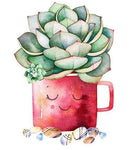 5D Diy Diamond Painting Kits Cartoon Plant Cactus NA0351