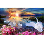 5d Full Diamond Painting Kits Best Dream Style Swan QB5833