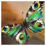 Cheap Oil Painting Style Butterfly Diy 5d Full Diamond Painting Kits QB5494
