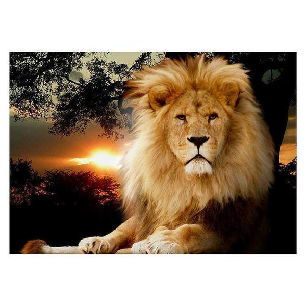 2019 5d Full Diamond Painting Kits Style Lion QB5863