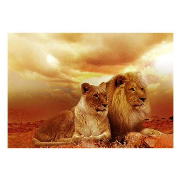 Dream Lion Pattern Diy 5d Full Diamond Painting Kits QB5865
