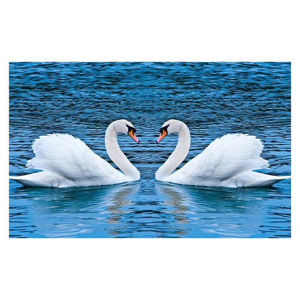 For Beginners Swan 5d Diy Cross Stitch Diamond Painting Kits QB5843