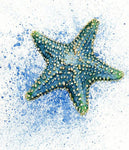 5D DIY Diamond Painting Kits Cartoon Full Drill Starfish NA0824