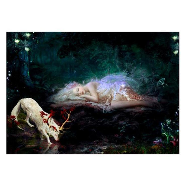 Cheap Fairy And Deer Picture Diamond Painting Kits QB62604