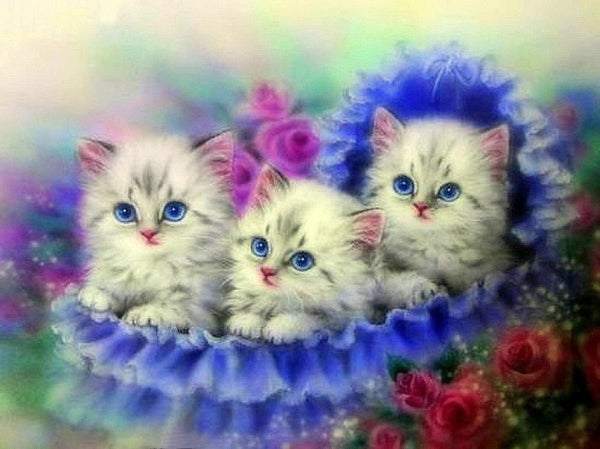 Cute Cats Portrait 2019 New Hot Sale Gift Diy 5d Rhinestone Art Kits VM7470