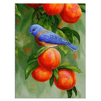 2019 5d Diy Diamond Painting Kits Animal Cute Bird VM88701