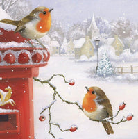 2019 5d Diy Diamond Painting Kits Winter Snow Bird VM8989