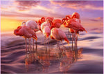 Dream Full Drill Flamingos 5D Diy Embroidery Diamond Painting Kits NA0295