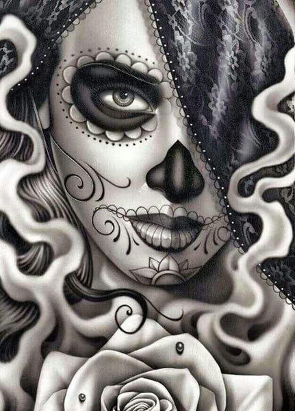 2019 5d Diy Diamond Painting Kits Skull Girl VM8643