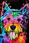 5d Diy Diamond Painting Kits Special Colorful Dog VM09528