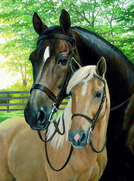 2019 5d Diy Diamond Painting Kits Two horse Love Wall Decor  VM8583