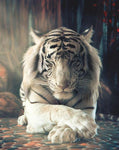 2019 5d Diy Diamond Painting Kits Tiger Decor  VM9749