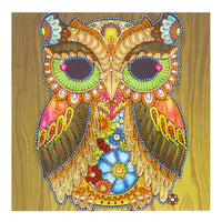 Half Drill Owl Diamond Painting Kits HD90129