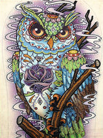 Half Drill Owl Diamond Painting Kits HD90179
