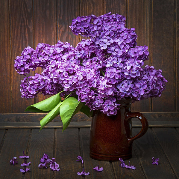 2019 5d Diy Diamond Painting Flower Kits Lavender VM3575 (1766999982170)