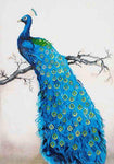 Large Size Blue Peacock 5d Diy Diamond Painting Kits AF9069