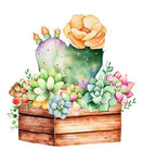 Modern Art Plant Cactus 5D Diy Embroidery Cross Stitch Diamond Painting Kits NA0349