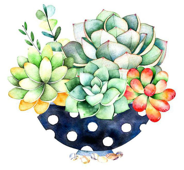 Modern Art Plant Cactus 5D Diy Embroidery Cross Stitch Diamond Painting Kits NA0350