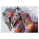 2019 5D DIY Diamond Painting Kits Colorful Horse VM1173