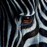 Modern Art Zebra 5D Diy Embroidery Cross Stitch Diamond Painting Kits NA00370