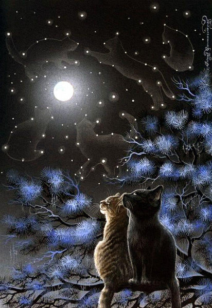 5D Diy Diamond Embroidery Diamond Mosaic Art Moon Night Cat VM92060