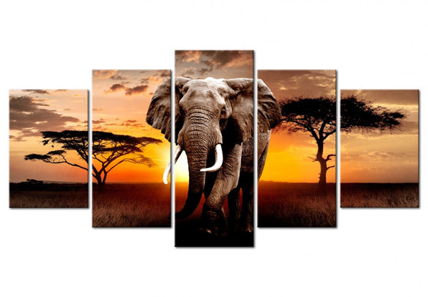 2019 5d DIY Diamond Painting Kits Sunset Elephant VM8193
