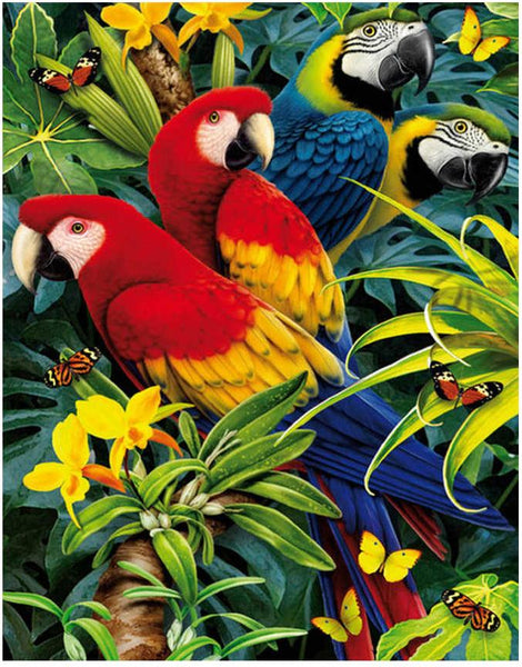 Hot Sale Full Square Drill Cute Parrot 5D Diy Diamond Painting Kits NA0087