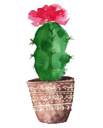 New Cartoon Cactus 5D DIY Embroidery Cross Stitch Diamond Painting Kits NA00083