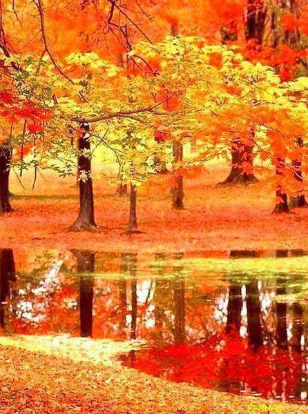 2019 5d Diy Diamond Painting Kits Autumn Forest VM20485