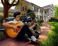 5D DIY Diamond Painting Kits Embroidery Cross Stitch Guitar Boy VM92172