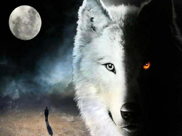5D DIY Diamond Painting Kits Moon Night Wolf VM88181